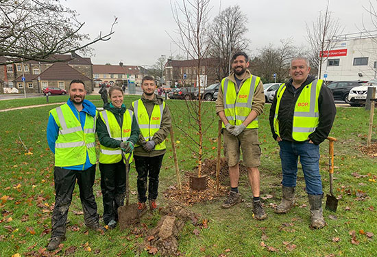 BDP first company to support Bristol's Tree campaign